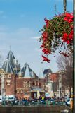 Beautiful red flowers embellish the bridges at the Old Central district in Amsterdam. On the first days of spring beautiful red flowers embellish the bridges at stock photography