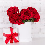 Beautiful red flowers and gift box over brick wall Stock Photo