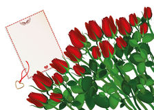 Beautiful red flowers. Roses with envelope and blank. Empty space Royalty Free Stock Photo