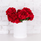 Beautiful red flowers in vase over brick wall Royalty Free Stock Photo