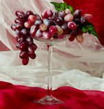 Beautiful red grape in glass Stock Photos