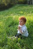 Beautiful red-haired boy on grass Stock Photos
