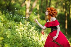 Beautiful red-haired girl in a red dress on a green background Royalty Free Stock Image