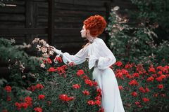 Beautiful red-haired girl with a high hair in an old white dress Stock Photos