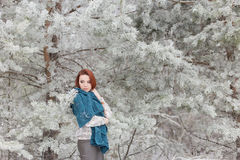 Beautiful red-haired girl with a scarf on his shoulders walking in the winter forest of firs and pines stilled Stock Photo