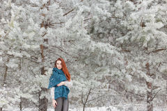 Beautiful red-haired girl with a scarf on his shoulders walking in the winter forest of firs and pines stilled Royalty Free Stock Photo