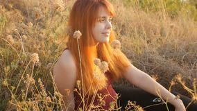 Beautiful red-haired girl sits on the ground in a field among dried flowers and enjoys nature at sunset, young woman relaxing, con. Cept of rest, healthcare stock footage
