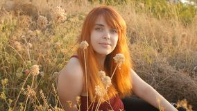 Beautiful red-haired girl sits on the ground in a field among dried flowers and enjoys nature at sunset, young woman relaxing, con stock footage