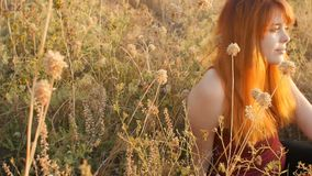 Beautiful red-haired girl sits on the ground in a field among dried flowers and enjoys nature at sunset, young woman relaxing, con stock video