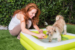 Beautiful red-haired woman plays with her dog by the pool.  Stock Photo