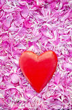 Beautiful red heart on fresh peony blossoms petal background Stock Image