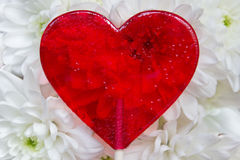 Beautiful red Heart shaped Candy in white flowers background Stock Photo