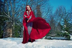 Beautiful red hood. Royalty Free Stock Photography