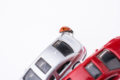 Beautiful red ladybug walking on a model car Stock Photos