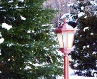 Beautiful red lantern with snow-Stock photos royalty free stock image