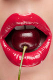 Beautiful red lips. Royalty Free Stock Image