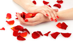 Beautiful red manicure Royalty Free Stock Photos
