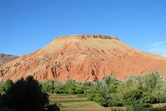 Beautiful red mountain in desert oasis Stock Image