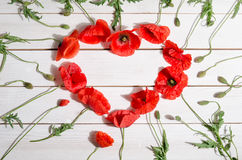 Beautiful red poppies in shape of heart Stock Photo