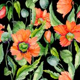 Beautiful red poppy flowers with green leaves on black background. Seamless floral pattern. Watercolor painting. Hand painted illustration. Fabric, wallpaper Stock Photo