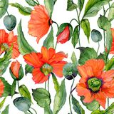 Beautiful red poppy flowers with green leaves on white background. Seamless vivid floral pattern. Watercolor painting. Hand painted illustration. Fabric vector illustration