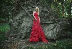 Beautiful red qeen in the old forest Royalty Free Stock Image