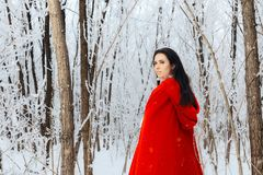 Beautiful Red Riding Hood Princess in Magic Winter Forest Royalty Free Stock Photos
