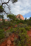 Beautiful red rock landscape hiking area in Sedona Royalty Free Stock Images