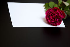 Beautiful red rose and a blank white sheet of paper Royalty Free Stock Images