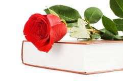 Beautiful red rose on the book Royalty Free Stock Photography