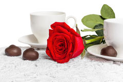 Beautiful red rose and cup of hot tea with chocolate Stock Images