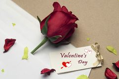 Red rose in an envelope on a light brown background. Beautiful red rose in an envelope on a light brown background Stock Photos