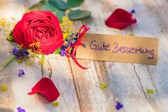 Flowers and card with german text, Gute Besserung, means get well soon. Beautiful red rose flower and card with german text, Gute Besserung, means get well soon royalty free stock images