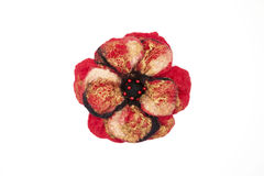 Beautiful red rose flower milled wool with beads on a white background. Stock Photos