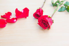 Beautiful Red rose flower on wooden background . Beautiful Red rose flower on wooden background Royalty Free Stock Images