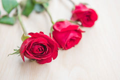 Beautiful Red rose flower on wooden background . Beautiful Red rose flower on wooden background Royalty Free Stock Photo