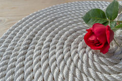 Beautiful red rose lily over rope Stock Photo