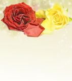 Beautiful red rose on magical background Stock Photography