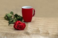 Beautiful red rose and mug on rustic background with copy space Stock Photos