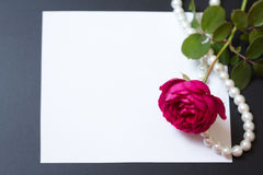 Beautiful red rose with pearls on blank white sheet paper Stock Images
