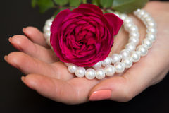 Beautiful red rose with pearls in a female hand Royalty Free Stock Image