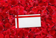Beautiful red rose petals background and envelop (letter) Stock Image