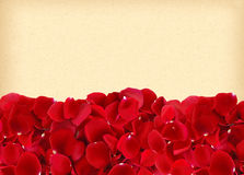 Beautiful red rose petals on old yellow paper Stock Photo