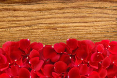 Beautiful red rose petals over wood texture close-up Stock Images