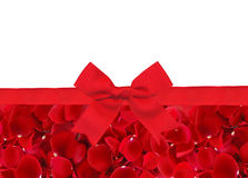 Beautiful red rose petals and red ribbon with bow isolated Stock Image