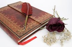Beautiful Red Rose and Red Fountain Pen on an Antique Book stock images