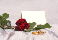 Beautiful red rose and wedding ring. Royalty Free Stock Photo