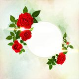 Beautiful red roses decorated on a free field can be used as background. Or as an invitation card free space for your text Royalty Free Stock Images