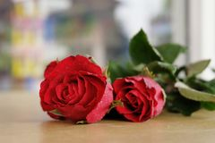 Beautiful red roses for my love on Valentine's day. Royalty Free Stock Images