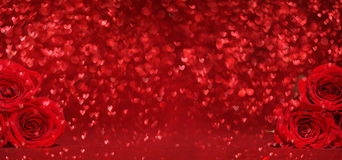 Beautiful red roses on red background Stock Photo
